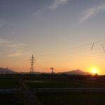 田んぼアート足場の上からの眺め(2)