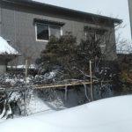 我が家 今年は雪に埋まってます