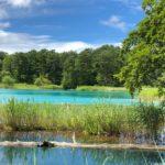 池、沼、湖の違い
