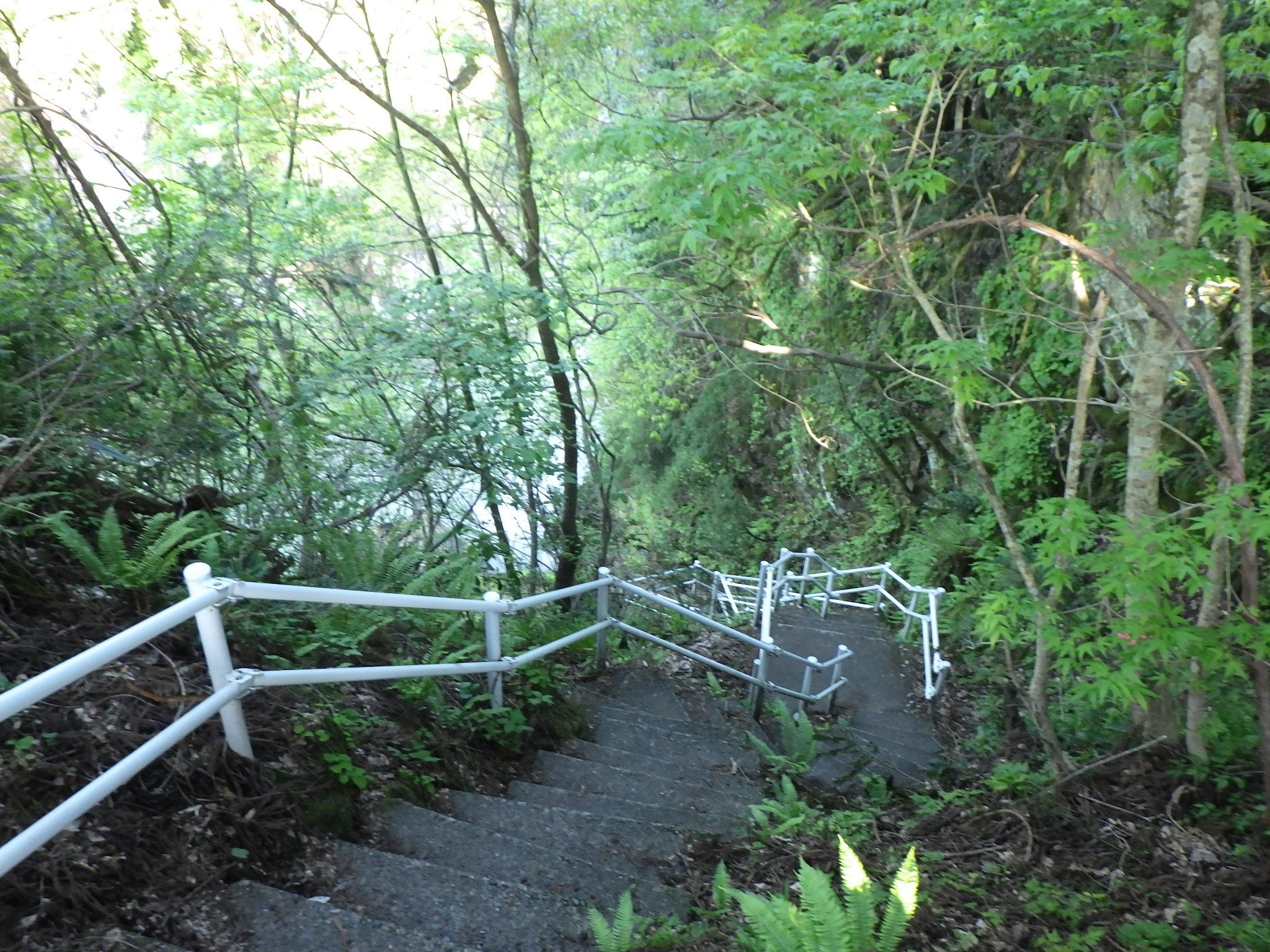 階段と運動不足の確認