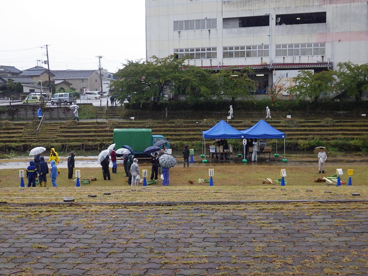 雨天中止になった秋葉区ボランティア