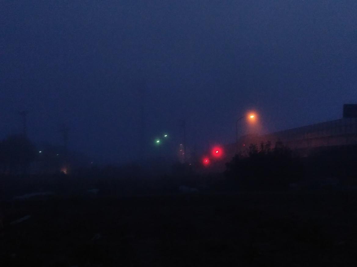 朝、濃霧で別世界の町、新潟になりました。