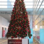現場のクリスマスツリー