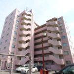 賃貸:駅から徒歩圏内 中央区南笹口の9階建てマンション
