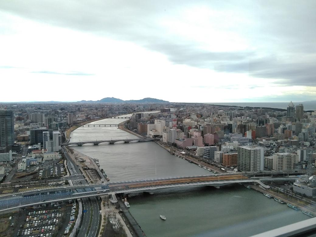 大寒(20日)をすぎたり新潟市、何処にも雪が・・・・・・・・
