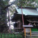 高森の大欅