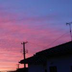 ある日の朝~窓からの眺め!!